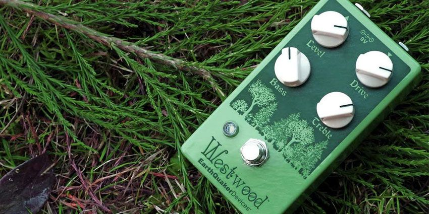 EarthQuaker Devices perdu en Forêt